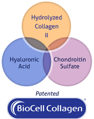 Hydrolyzed Collagen, Hyaluronic Acid, and Chondroitin Sulfate Diagram